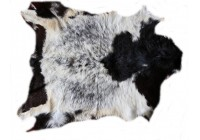 CH 40912  Chevre Goat